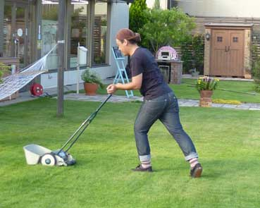 芝刈りは夏場なら月に2回程度