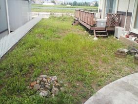 before:雑草の茂る広いお庭