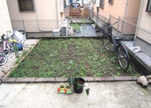 雑草に覆われていたかつてのお庭の様子