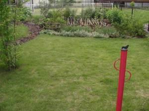 ドッグランとしての芝生のスペース