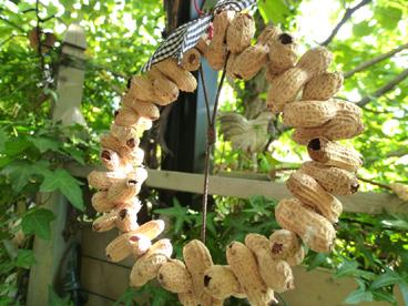 シジュウカラが喜ぶピーナッツのリース
