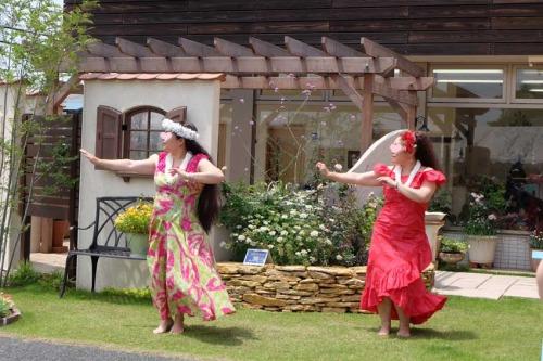 【ガーデンマルシェ:ステージパフォーマンスは、4つのチームがダンスや演奏を披露】