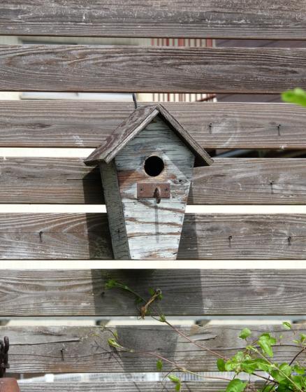 スズメの巣箱