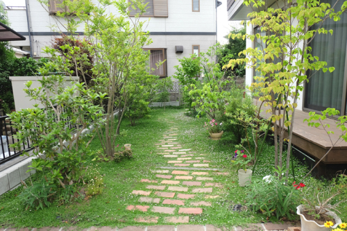 庭 雑木林風