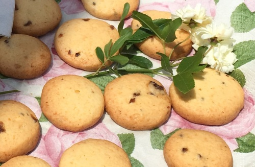 ナツメ&フェンネルハーブクッキー