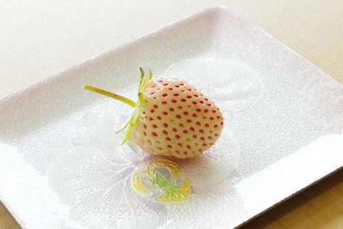 白イチゴ1