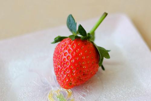 赤イチゴ1