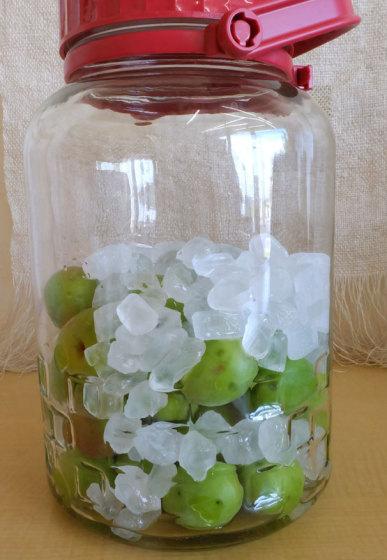 【目にも爽やかな梅と氷砂糖のコントラスト】