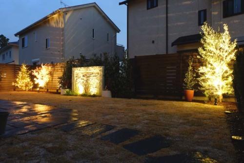 樹木とアクセントウォールをライトアップした写真