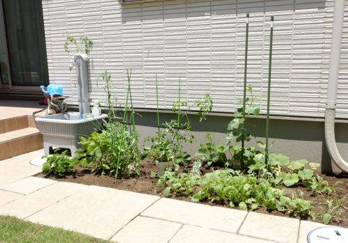 施工後の家庭菜園の写真