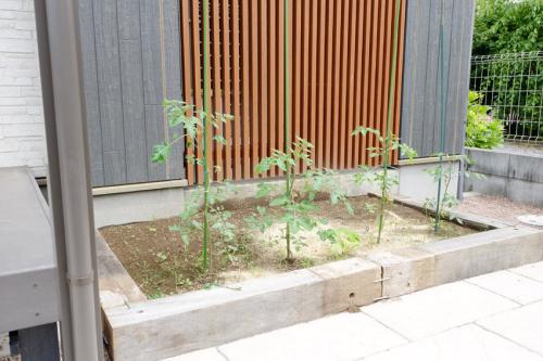 枕木で囲まれた家庭菜園の写真