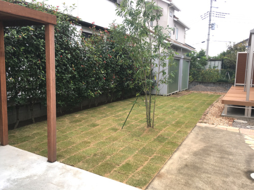 【芝生とシンボルツリーを植えたお庭の様子】