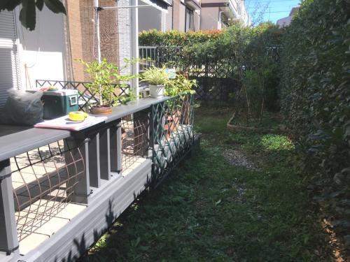 リフォーム前 雑草がはびこるお庭の様子