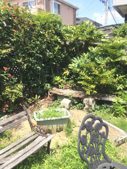 リフォーム前の荒れたお庭の写真