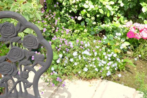 テラスの周囲に咲く花の写真